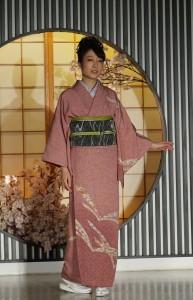 """""""Edo-komon"""" hómongi, přehlídka v Nishijin Textile Center, Kjóto"""